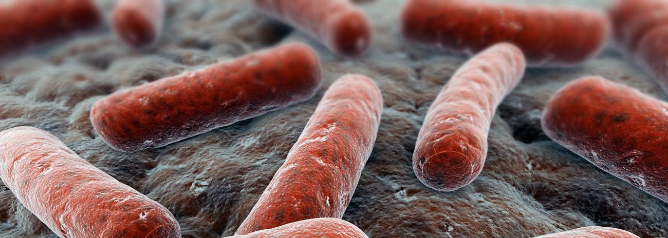 biocide-chemicals